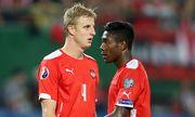 SOCCER - UEFA EURO 2016 quali, AUT vs SWE / Bild: (c) GEPA pictures/ Mario Kneisl