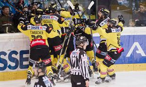 ICE HOCKEY - EBEL, Black Wings vs Capitals / Bild: (c) GEPA pictures/ Matthias Hauer