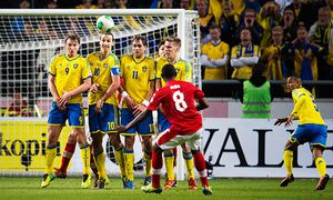 FUSSBALL - FIFA WM 2014 Quali, SWE vs AUT / Bild: (c) GEPA pictures/ Bildbyran