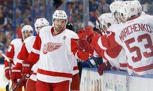 ICE HOCKEY - NHL, Lightning vs Red Wings / Bild: (c) GEPA pictures/ USA Today