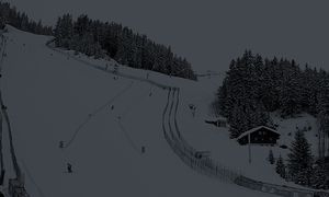 ALPINE SKIING - FIS World Cup, Crans-Montana / Bild: (c) GEPA pictures/ Christian Walgram