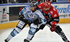SOCCER - EBEL, HCI vs Black Wings / Bild: (c) GEPA pictures/ Amir Beganovic