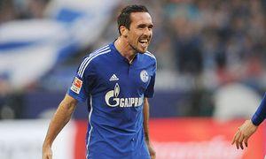 SOCCER - 1.DFL, Schalke vs Wolfsburg / Bild: (c) GEPA pictures/ Witters
