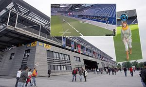 FUSSBALL - BL, RBS vs Ried / Bild: (c) GEPA pictures/ Felix Roittner