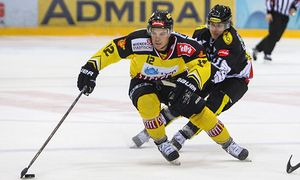 ICE HOCKEY - EBEL, Capitals vs Dornbirn / Bild: (c) GEPA pictures/ Philipp Brem