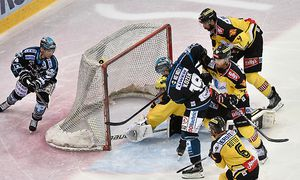 ICE HOCKEY - EBEL, Capitals vs Black Wings / Bild: (c) GEPA pictures/ Martin Hoermandin