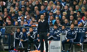 FC Schalke 04 v SC Paderborn 07 - Bundesliga / Bild: (c) Bongarts/Getty Images (Lars Baron)
