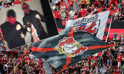 Bayer 04 Leverkusen v SC Paderborn 07 - Bundesliga / Bild: (c) Bongarts/Getty Images (Christof Koepsel)