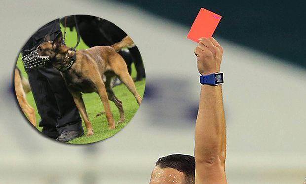 September 24 2016 Referee Sorin Stoica issues a red card to Orlando City FC midfielder Antonio Noce / Bild: SYMBOLBILD (c) imago/Icon SMI (imago sportfotodienst)